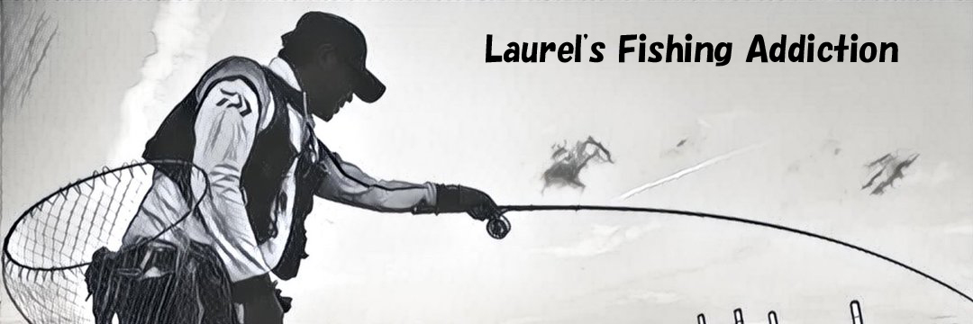 ローレルの黒鯛落としこみ釣りハマってます!!